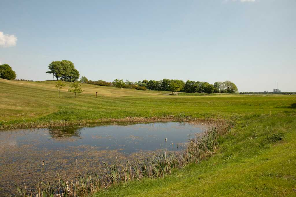 Dronninglund Golfklub OI5A8826redigeret