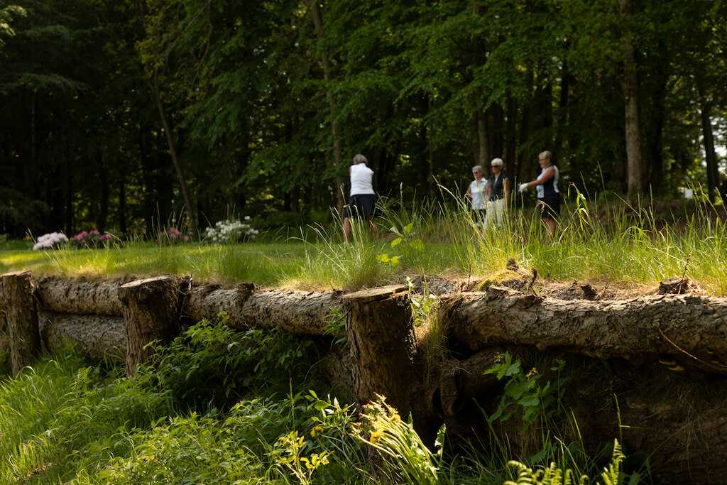 Dronninglund Golfklub OI5A8835redigeret
