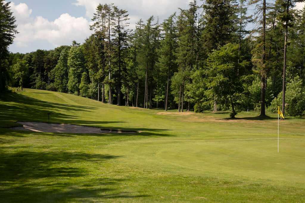 Dronninglund Golfklub OI5A8939redigeret